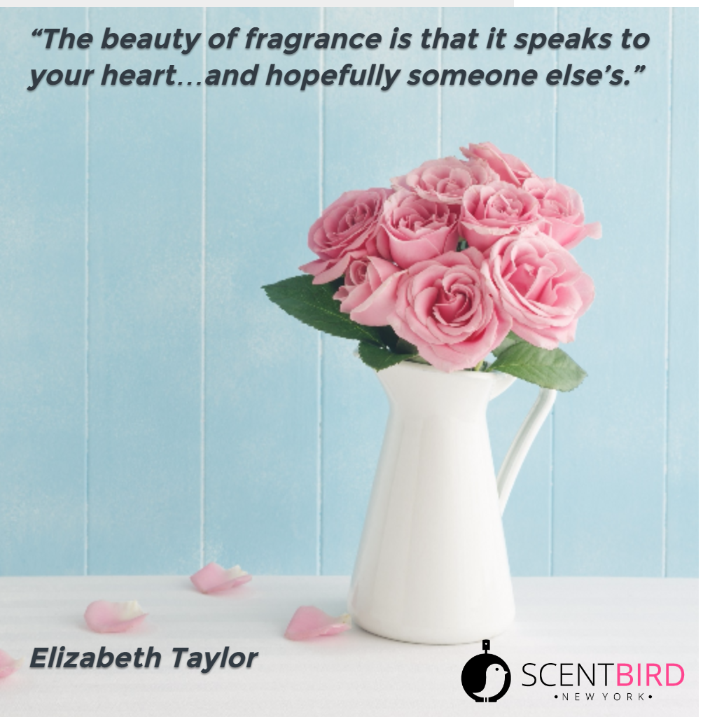 Elizabeth Taylor quote perfume