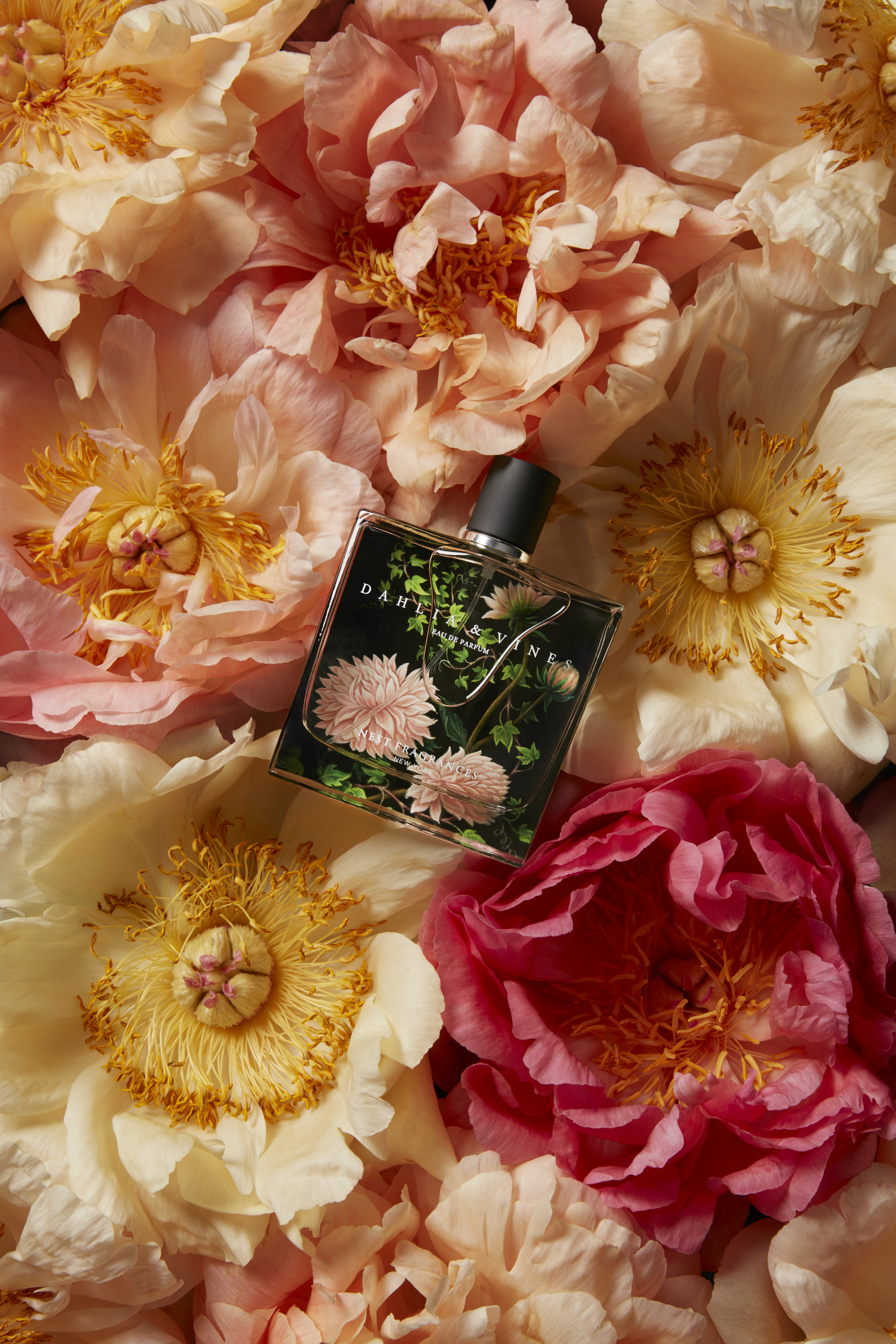 Fall In Love With Dahlia & Vines by Nest Fragrances