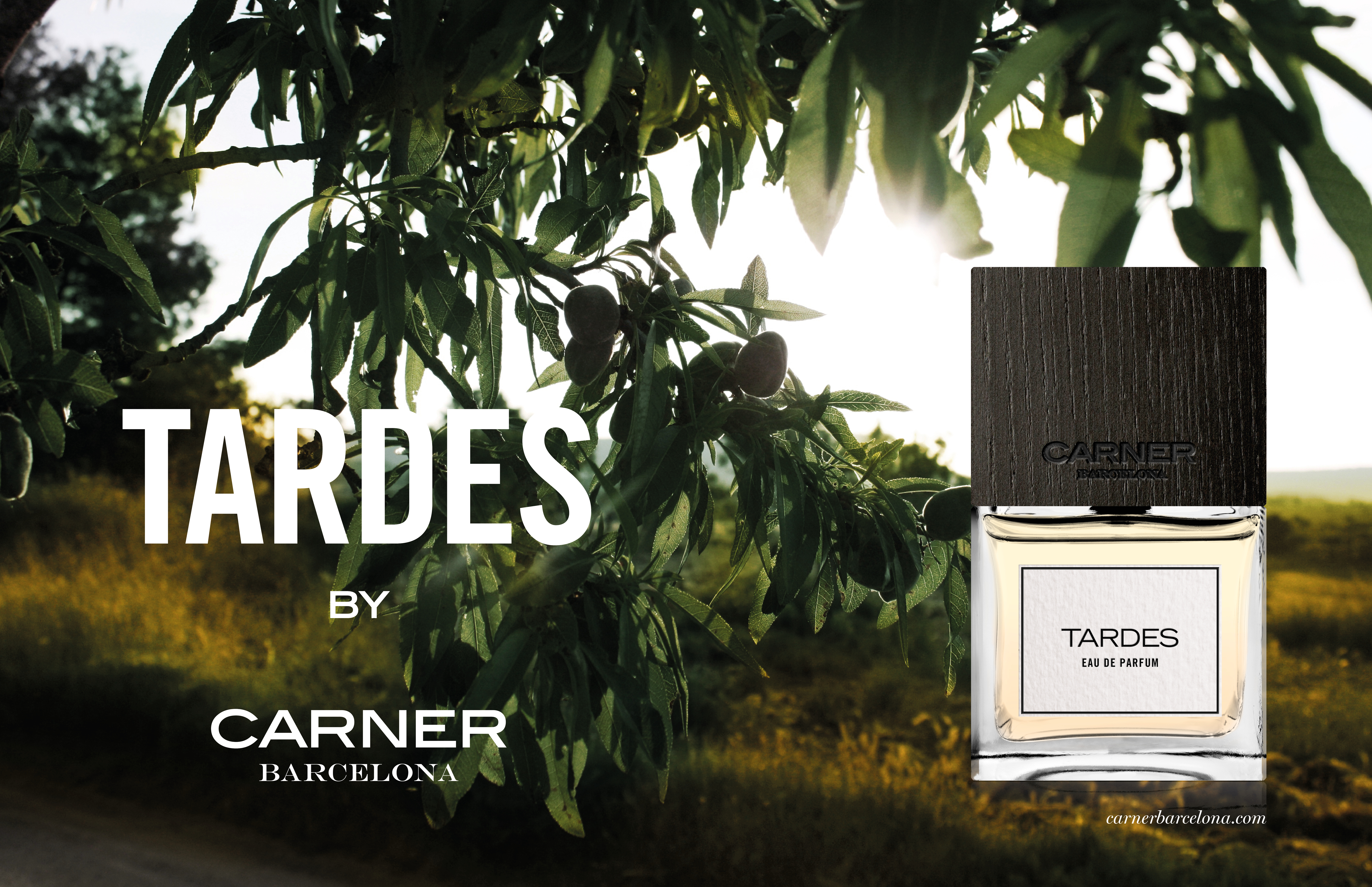 Thursday Scent Mood: Tardes by Carner Barcelona